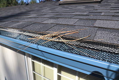 Rain Gutter Guards